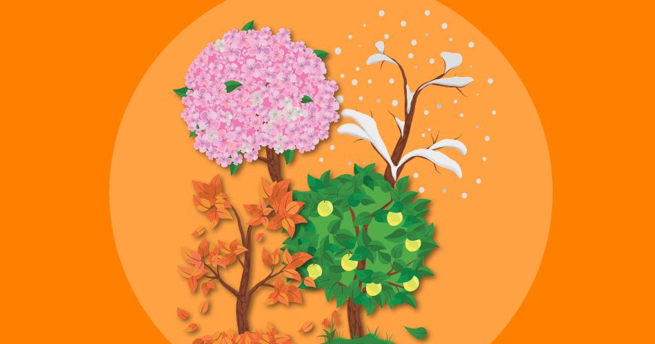 Jahreszeiten & Kalender